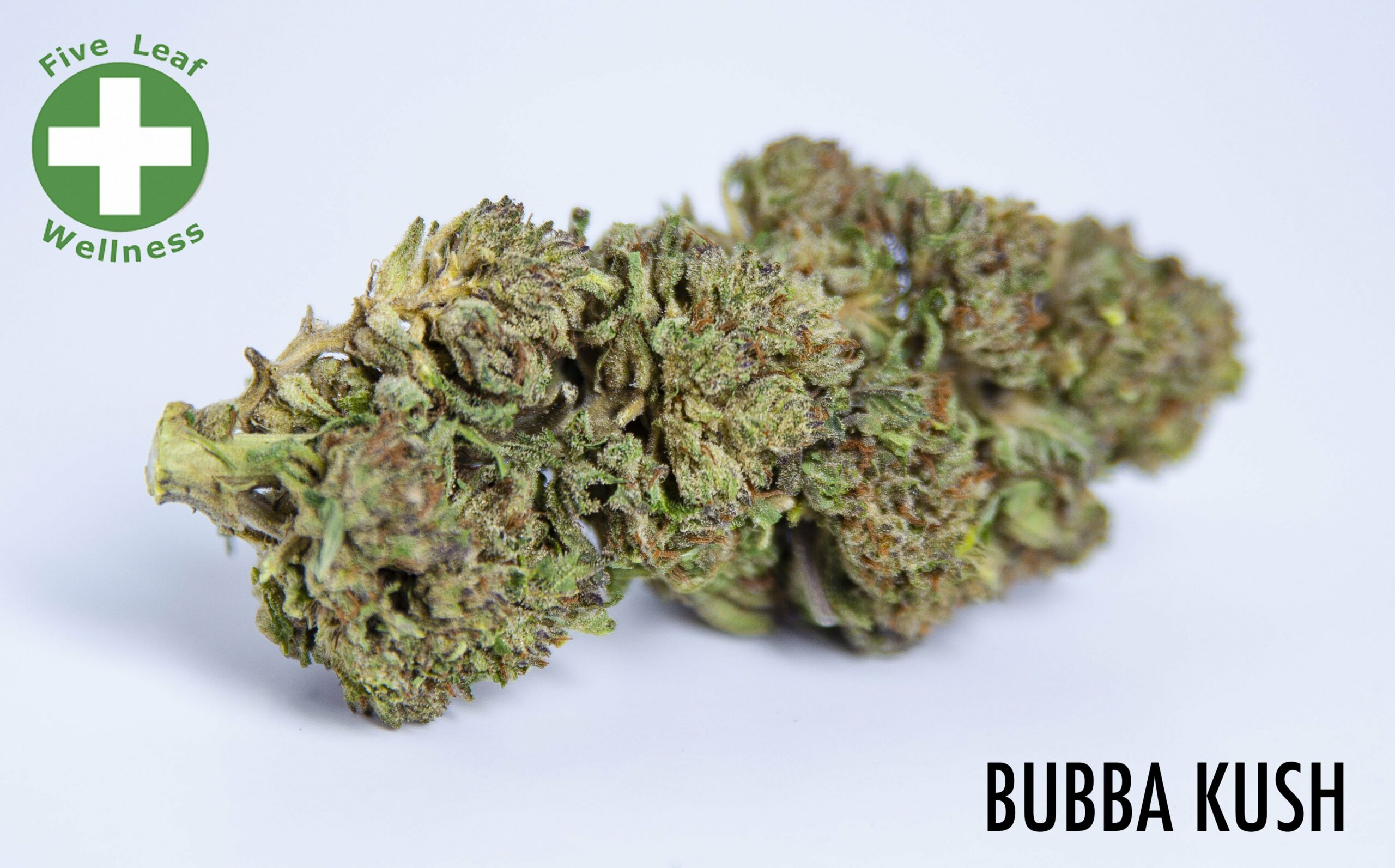 *SOLD OUT UNTIL HARVEST SEASON* Bubba Kush